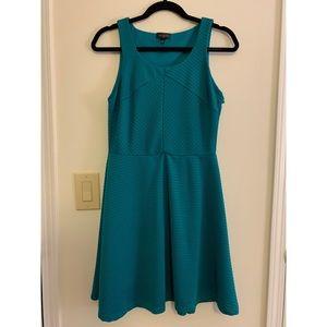 🚺 The Limited Sleeveless Flare Dress